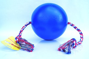 Tuggo 10 inch Blue Front