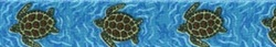 sea-turtles__13524__18171.1391607574.1280.1280
