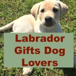 Labrador Gifts Dog Lovers